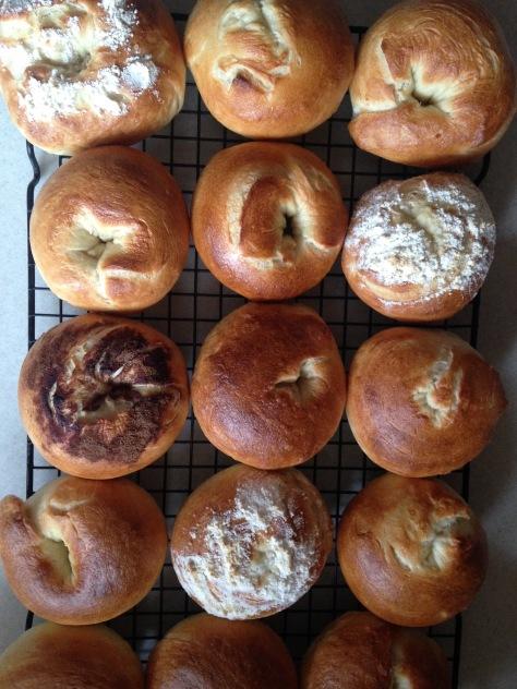 homemade bagels